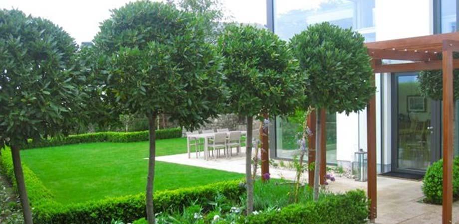 Gardenarium Mop Tops